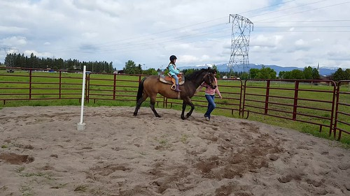 Lily's second horse riding lesson
