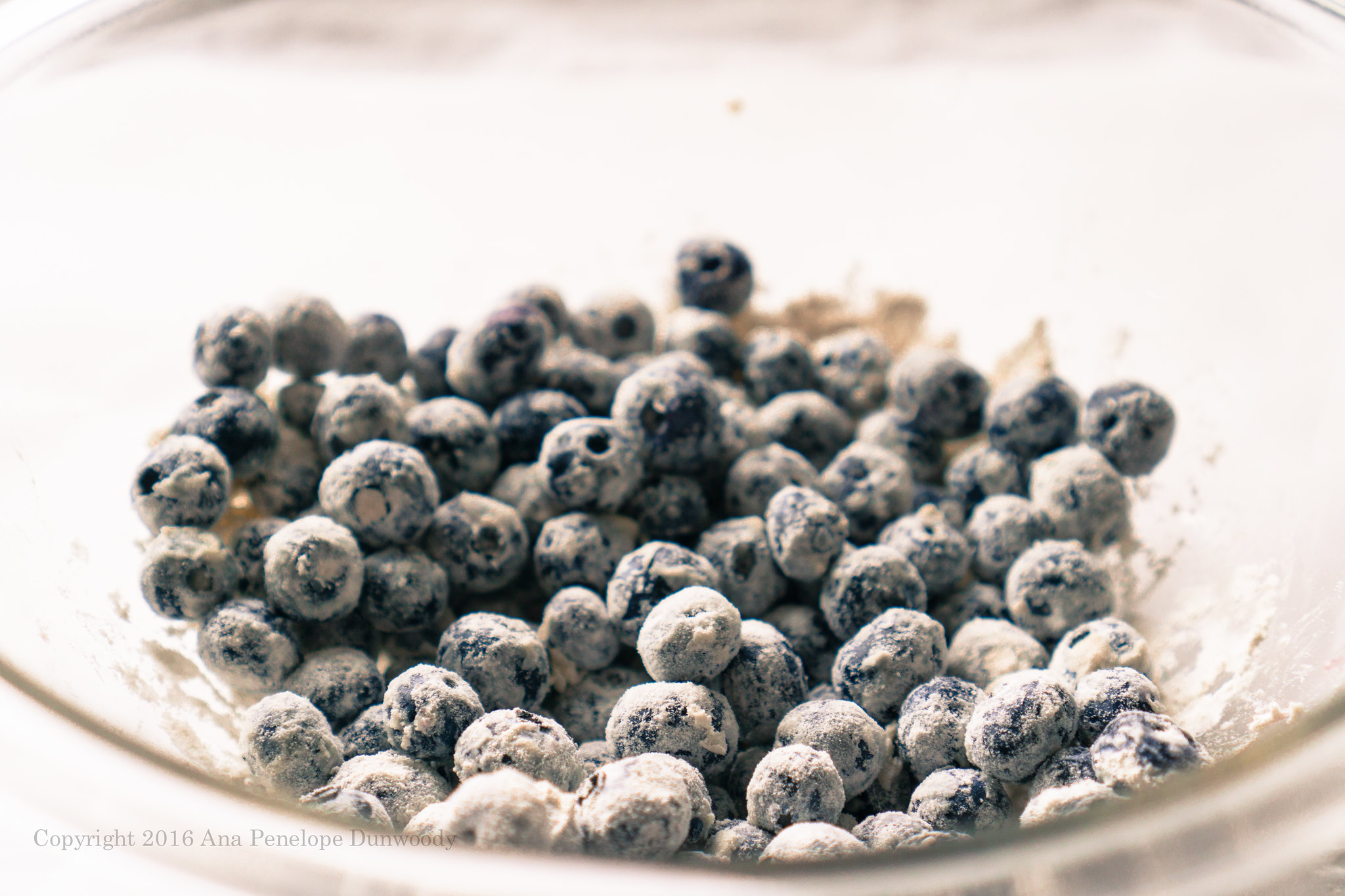 Organic Blueberries Covered in Flour