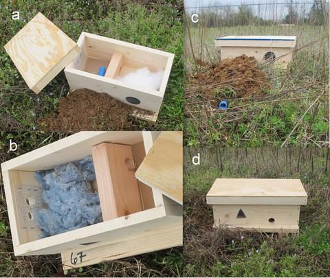 Bumblebee Artificial Nest Box Designs | Bumblebee nest box ...
