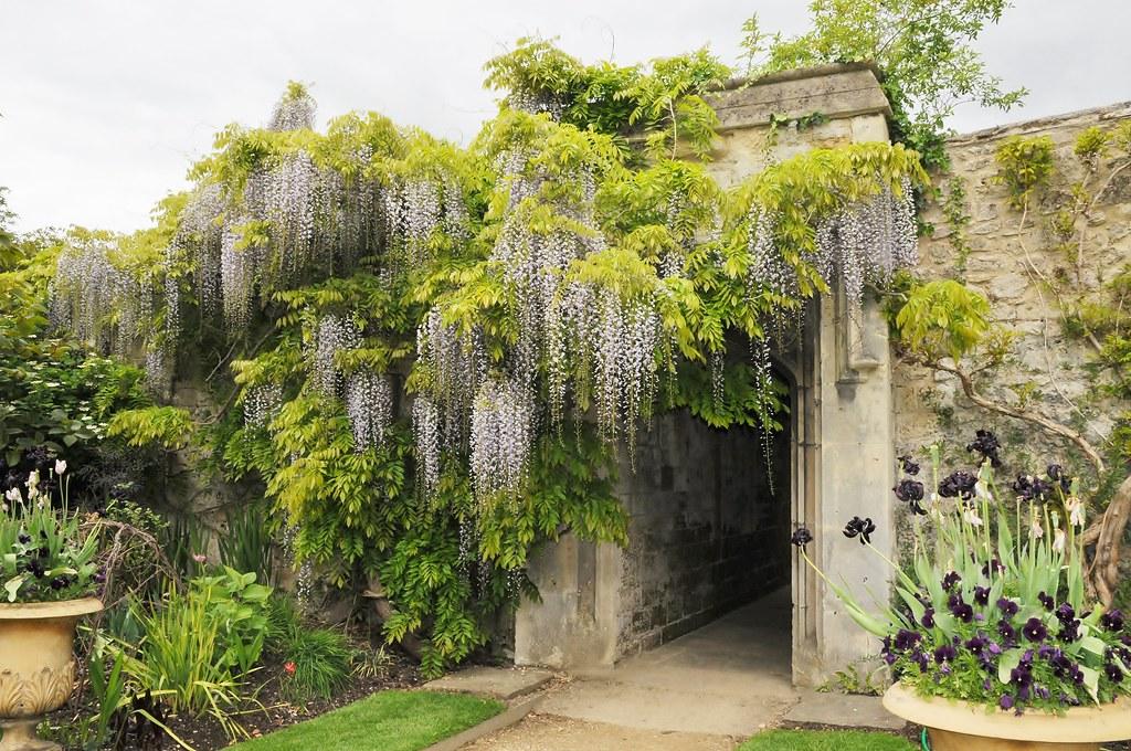Worcester College, Oxford - Garden! | georgepulford | Flickr
