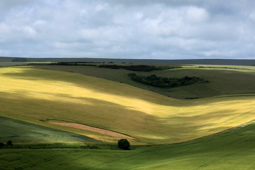 Sussex downs and cloud shadows
