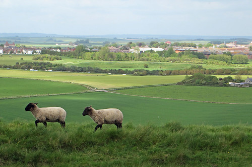 Dorchester, From Maiden Castle | by diamond geezer