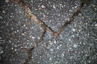 Crack in the pavement | by Jeff Buchbinder