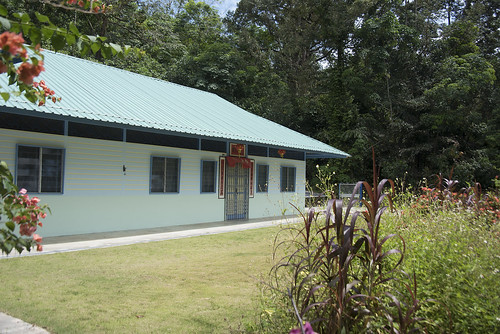 Chinese Kampung House No. 363 opposite Sensory Trail Ponds