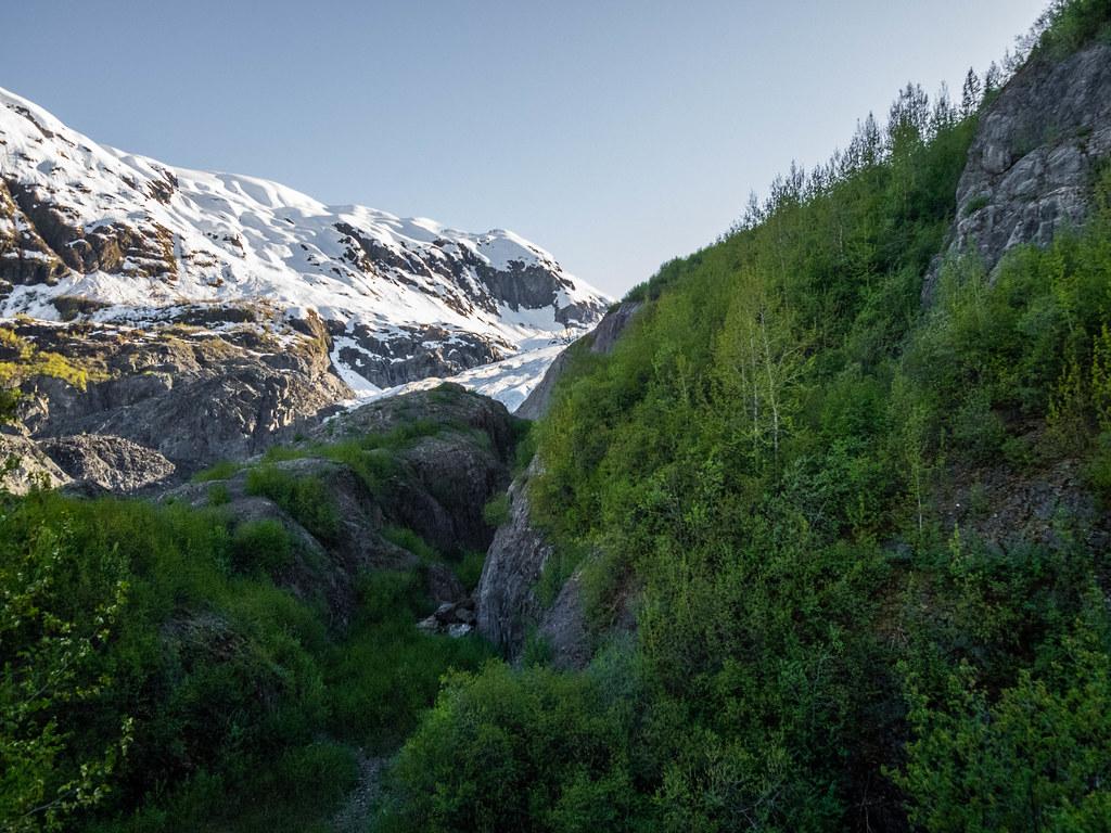 Exit Glacier-32