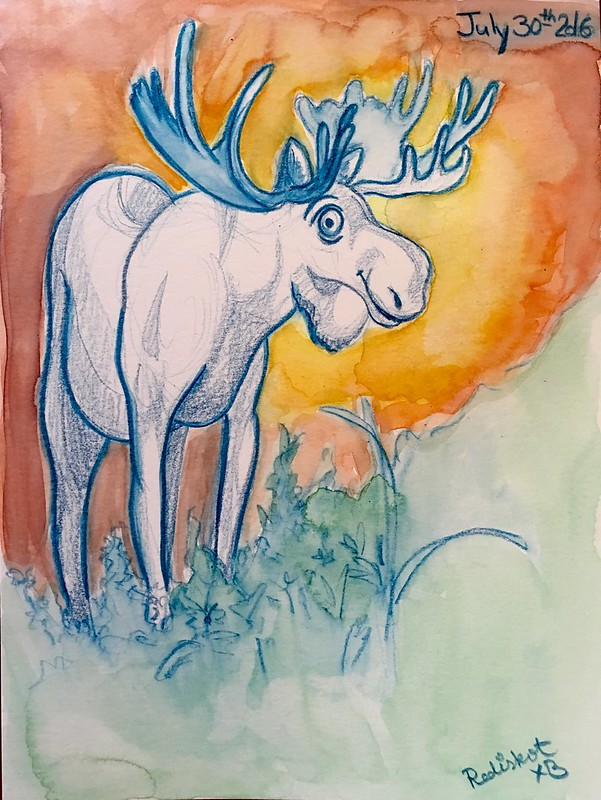 Sunset moose