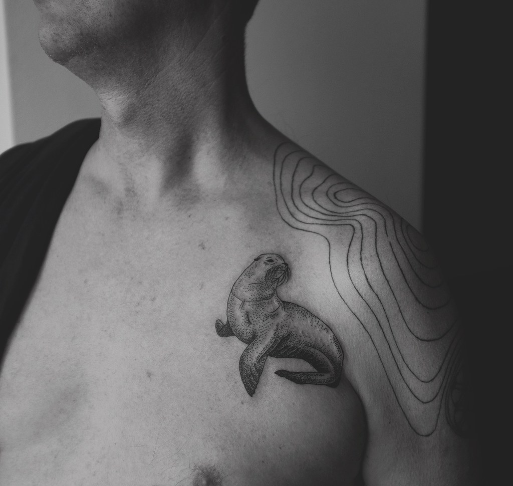 sea lion new tattoo for my father diana katsko flickr rh flickr com Ocean Fish Tattoos Flash Snake Tattoo Outline