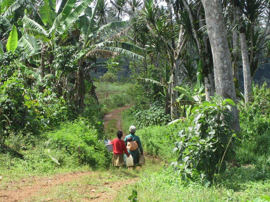 Camerun Rafforzamento delle capacità d'autogestione dei processi di sviluppo 2012