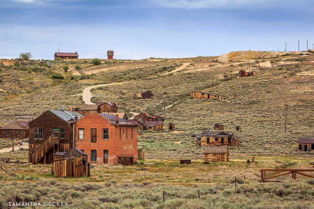 Bodie in the Afternoon