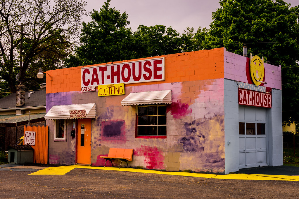 Le Cat House Corunna Michigan 6