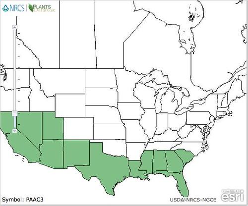 Retama NA Map