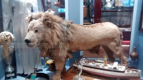 South Shields Museum Apr 16 (4)