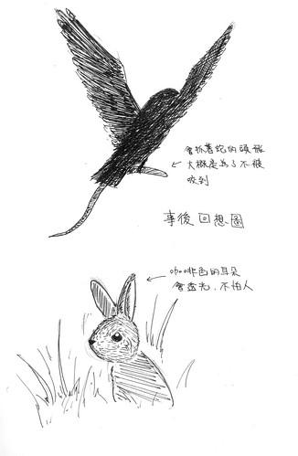 《自然日記。日記自然》2nd.