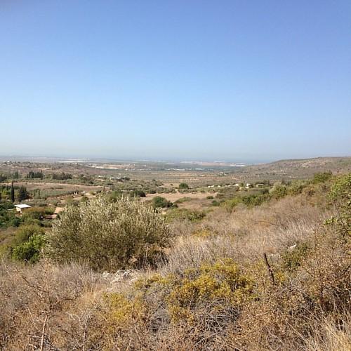 Dusty pastoralia #clil
