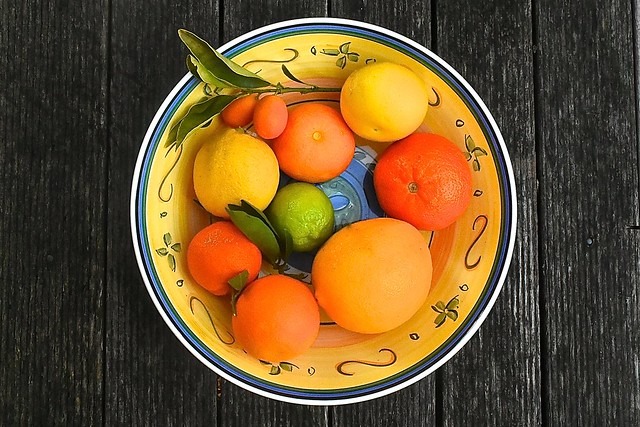 Citrus fruit from our garden, 18 July 2016