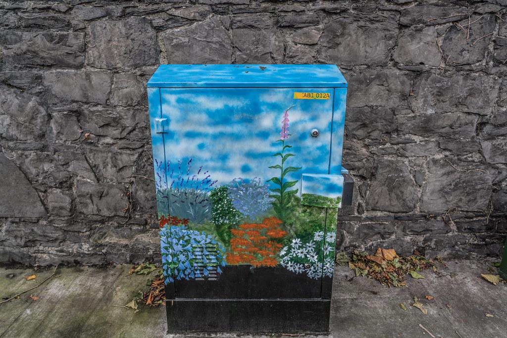 STREET ART - PAINT A UTILITY CABINET IN DUBLIN [PHIBSBORO]-121606