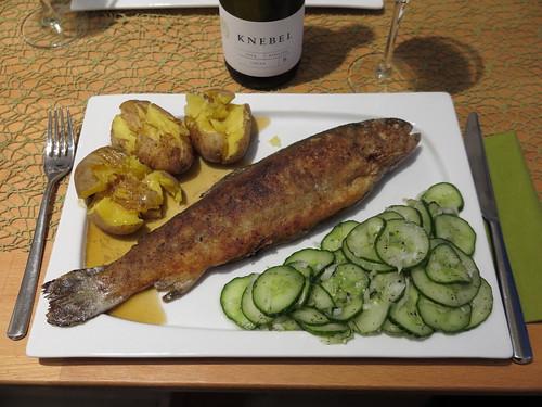 Gebratene Forelle mit Gurkensalat und Kartoffeln