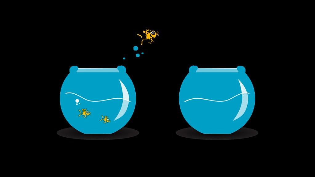 Fish Bowl Fish Tank Aquarium Goldfish Jump White Free To U Flickr