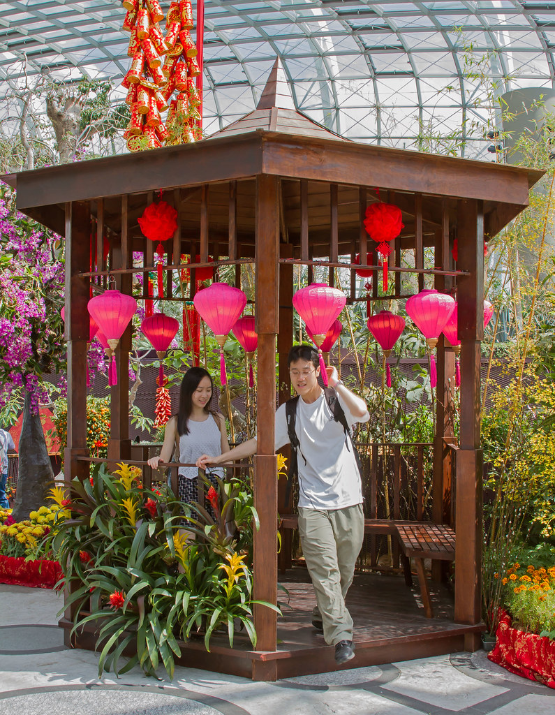 Gardens by the Bay, Singapore - DXO Optics Pro Conversion | Flickr
