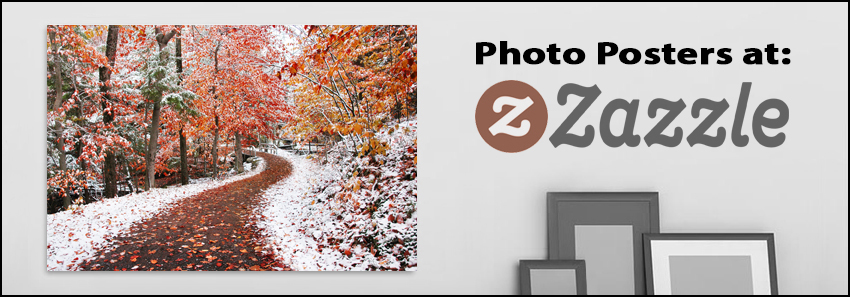 Photo Posters and Derivatives by Ben Heine - Zazzle Store