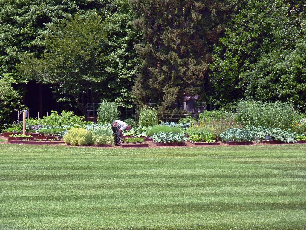 White House Garden | Marie Brandt | Flickr