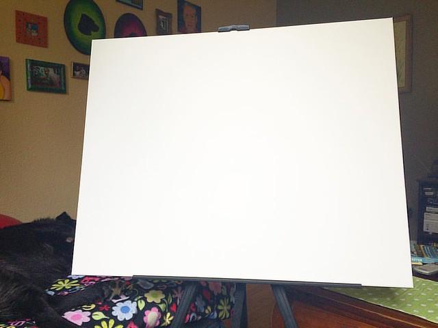 Nothing like a big ol' fresh canvas! 🎨