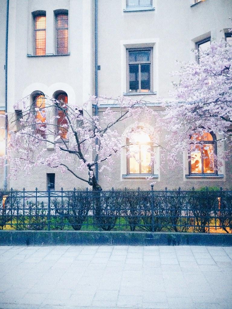 Foto 2015-04-25 20 40 01