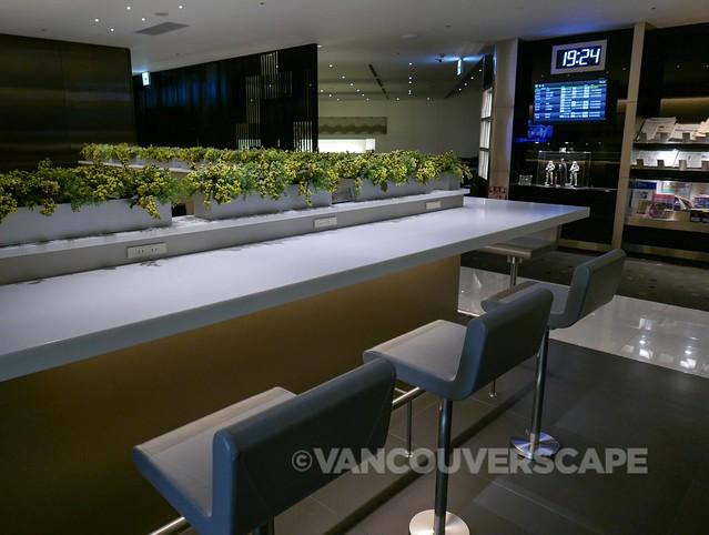 ANA Premium Economy-Haneda Lounge-15