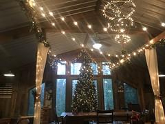 MGap Christmas Tree