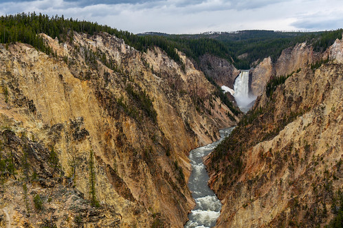 Grand Canyon of the Yellowstone | by stefanserena