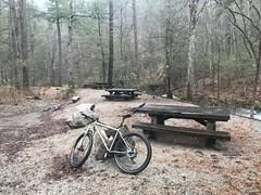Holly Creek Picnic Area