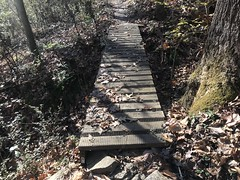 Good Bridge
