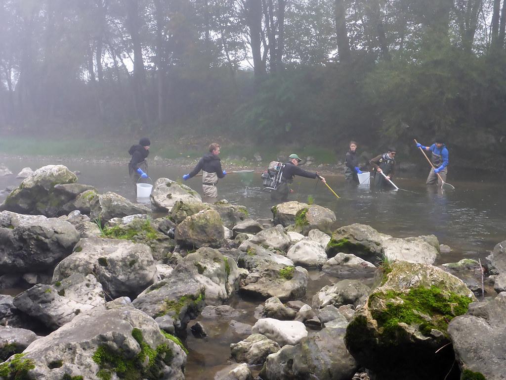 Raziskava vplivov CČN DOMŽALE-KAMNIK na reko Kamniško Bistrico