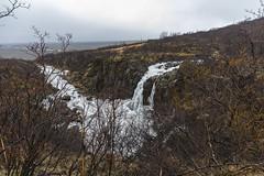 Parco nazionale Skaftafell