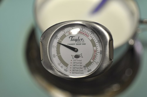 thermometer in milk | by Marisa | Food in Jars