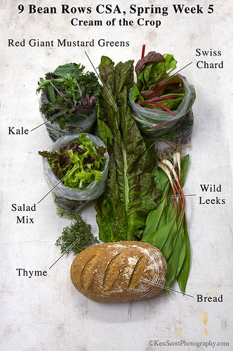 Spring CSA,  week 5,  Cream of the Crop  . . .  labeled | by Ken Scott
