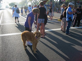 2012 04 22 - Run Thru Redlands - 5k - Doug, Kim, Murphy 015 | by dcarlson54