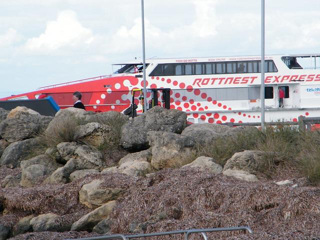 Hillarys To Rottnest Ferry Travel Time