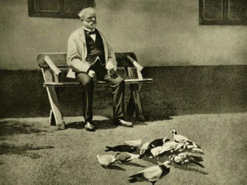 Dvorak and pigeons david finckel and wu han flickr for Mobel dvorak