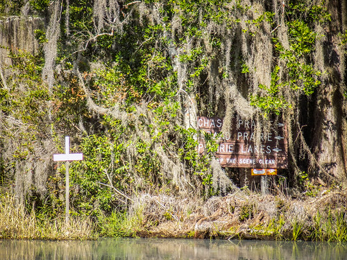 Lowcountry Unfiltered at Okefenokee-226