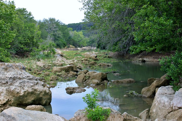 Austin barton creek greenbelt the water stopped flowing for Barton creek nursery