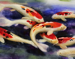 Koi 15x22 | by Echo Trail