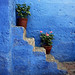 stairs, geranium and blues ...
