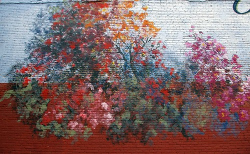 Crape Myrtle Mural, Duncan, Oklahoma | by blakelylaw580