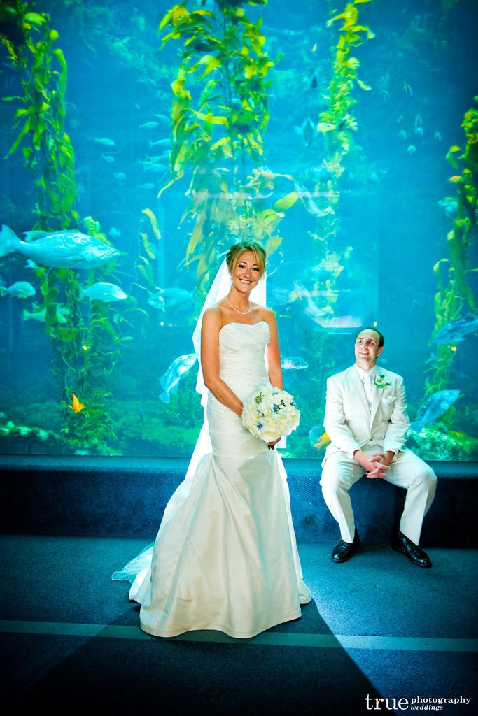 Birch Aquarium At Scripps Wedding At Birch Aquarium At