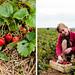 Diptych Strawberry Fields 2