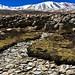 Ladakh Landscapes - Around Tsomoriri lake - The Light Fantastic