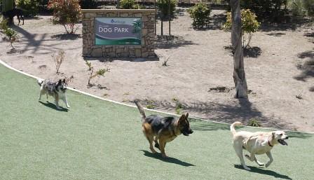 Oceanside Dog Park