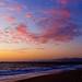 A pelican sunset in Playa del Rey