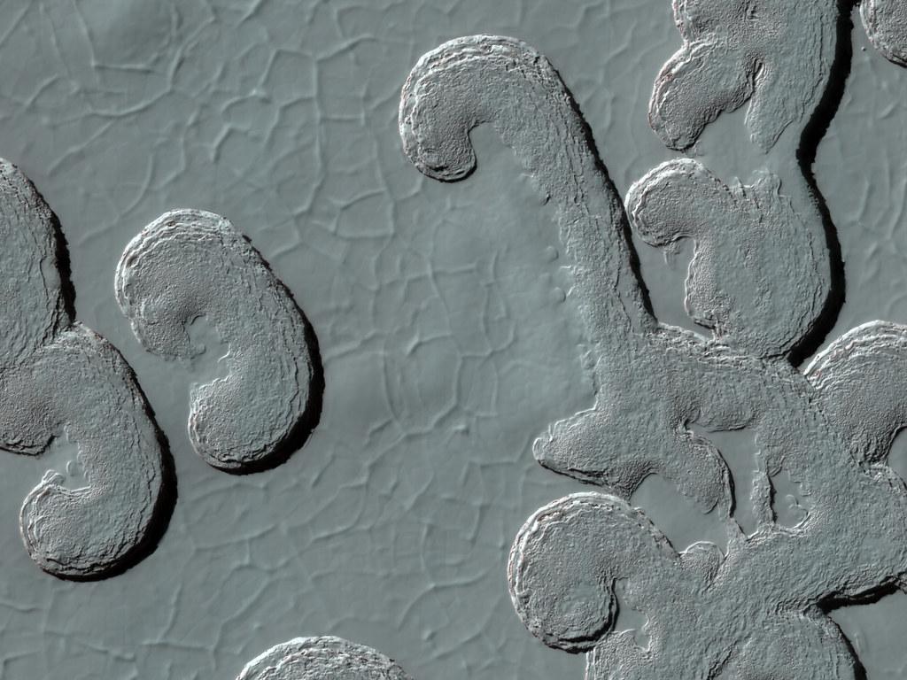 Landforms On Mars Nasa Mars 2009 Editor S Note Nasa S Flickr